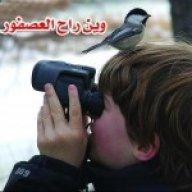 سعد السر